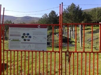 Sierra de Guadarrama (Spain)